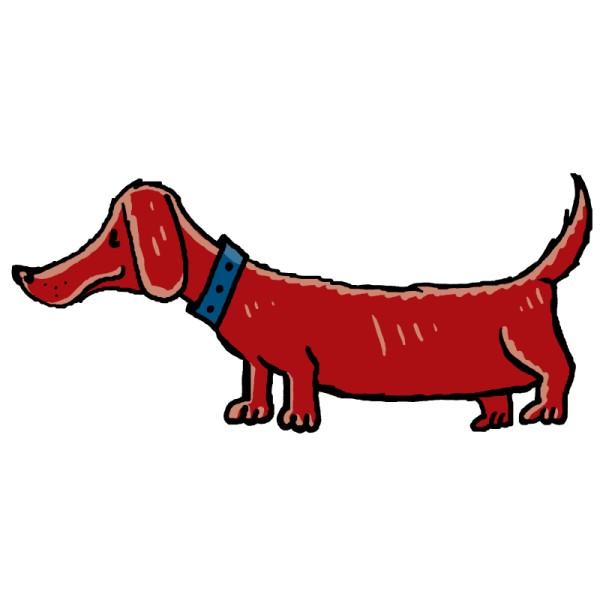 A <em>Dachshund</em> (sausage-dog)